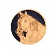 bridle_horse.jpeg