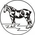 draft_horse_2.jpeg