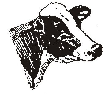 The gallery for --> Dairy Cow Head Silhouette